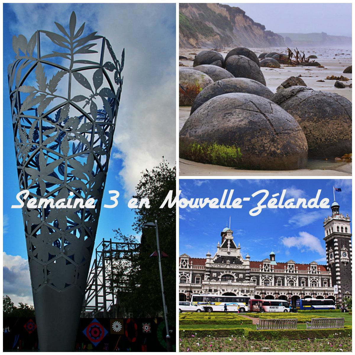 Nouvelle-Zélande semaine 3 : De Dunedin à Christchurch