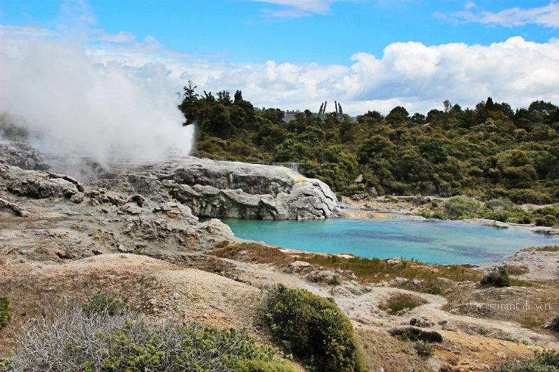 Nouvelle-Zélande semaine 1 : d'Auckland à l'île du sud